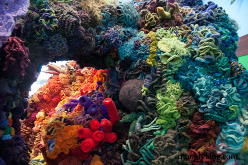 The Hyperbolic Crochet Coral Reef A Must See