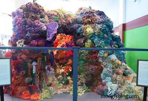 hyperbolic crochet coral reef project free patterns smithsonian