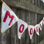 Perfect Party Pennant Garland