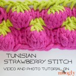 Tunisian Strawberry Stitch