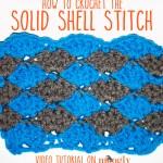 Solid Shell Stitch