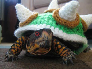 Bowser Costume for a Turtle:: Roundup of free crochet pet costumes on Moogly!