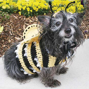 Bumblebee Costume  Roundup of free crochet pet costumes on Moogly! & Halloween Crochet for Furbabies: 10 Free Pet Costume Patterns!