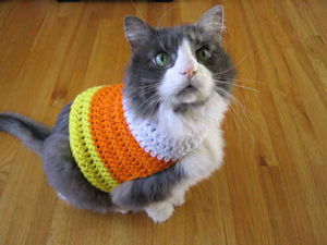 Candy Corn Pet Sweater :: Roundup of free crochet pet costumes on Moogly!
