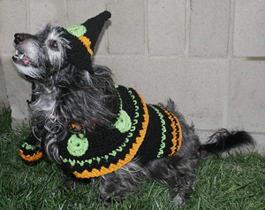 Dog's Crochet Witches Costume :: Roundup of free crochet pet costumes on Moogly!
