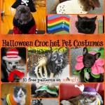 Halloween for Furbabies: 10 Free Pet Costume Patterns!