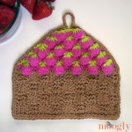 Strawberry Basket Tunisian Dishcloth :: free #crochet pattern with tutorials on moogly!