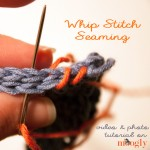 Whip Stitch Seaming