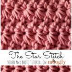 Star Stitch or Marguerite Stitch