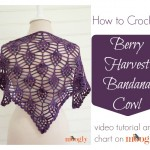 Berry Harvest Bandana Cowl Tutorial