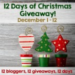 12 Days of Christmas Giveaway – on Moogly and More!