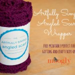 Artfully Simple Angled Scarf Gift Wrappers