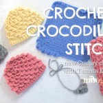 Coming Soon…. Crochet Crocodile Stitch, by ME, on Craftsy!