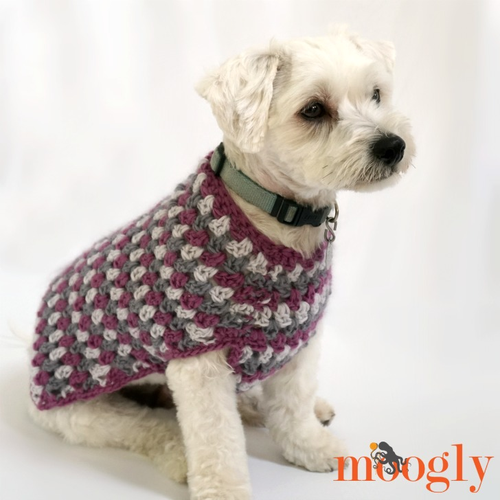 Well Dressed Dog Coat: Free crochet pattern in 4 sizes on Mooglyblog.com!