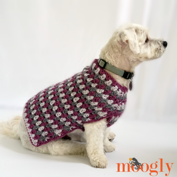 Well Dressed Dog Coat - moogly