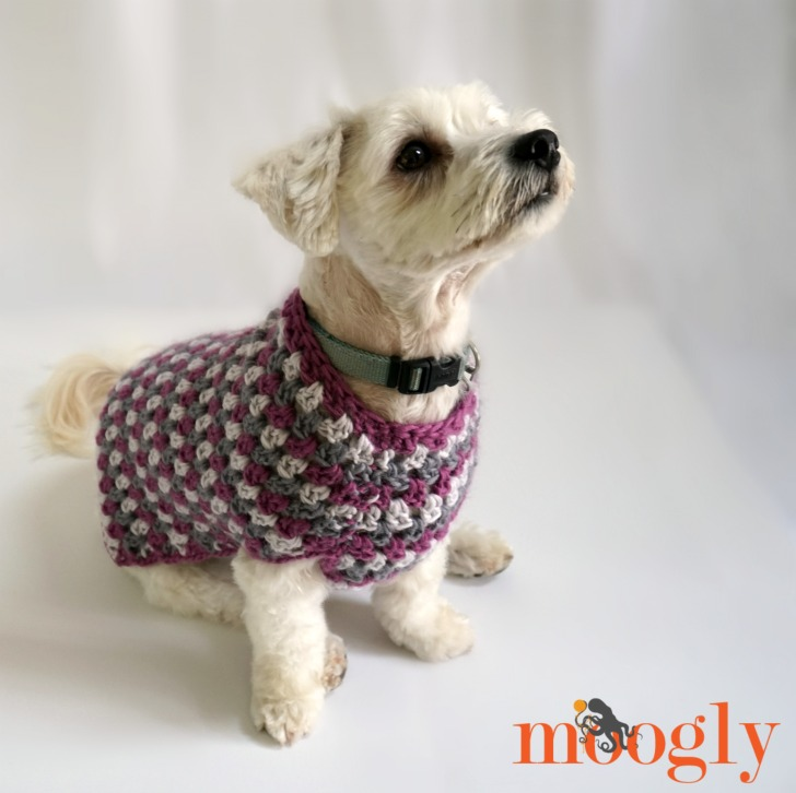 Well Dressed Dog Coat: Free crochet pattern in 4 sizes on Mooglyblog.com!