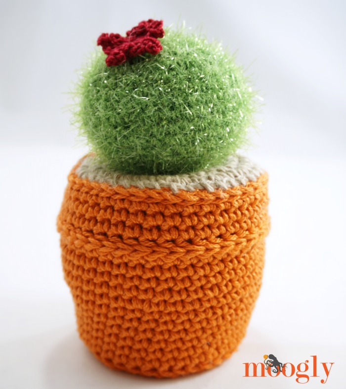 Amigurumi Cactus - get the kit on Moogly!