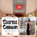 Cosmos Cardigan Tutorial