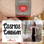 Cosmos Cardigan Tutorial - Moogly