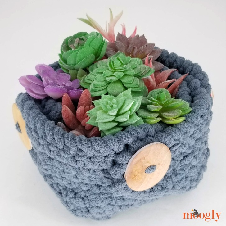Button Up Basket - free crochet pattern on Moogly