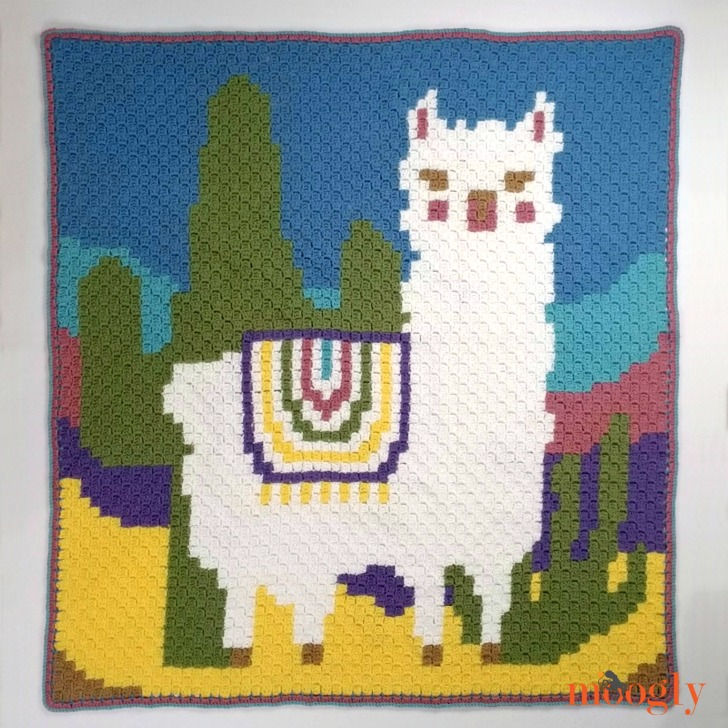 Llama and Cactus C2C Graphgan on Moogly