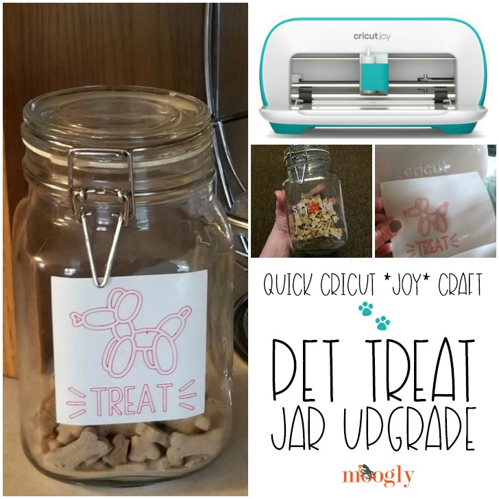 Quick Cricut Craft using the Cricut Joy! Upgrade a jar for your pet treats - tutorial on Moogly!