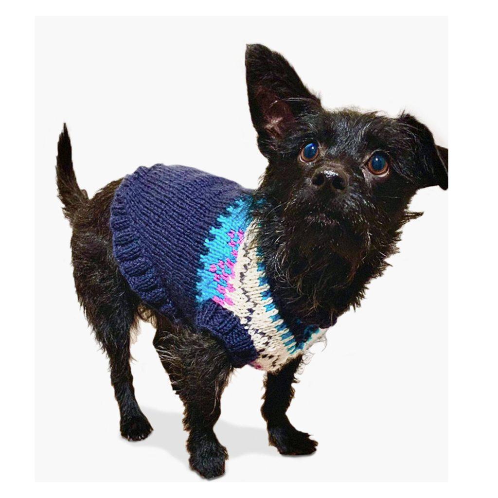 Bernat Family Knit Dog Sweater - free pattern!