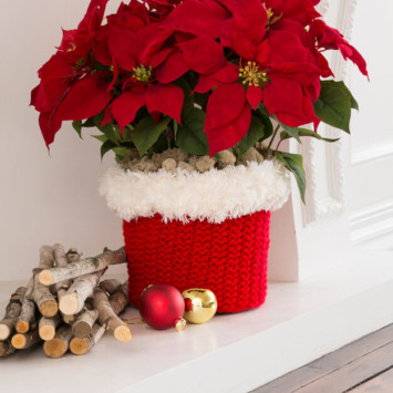 Red Heart North Pole Pot Cozy