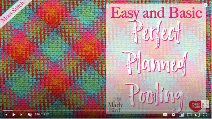 Planned Pooling Videos by Marly Bird