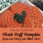 How to Crochet the Plush Puff Pumpkin Stem and Vines – and More, Live!