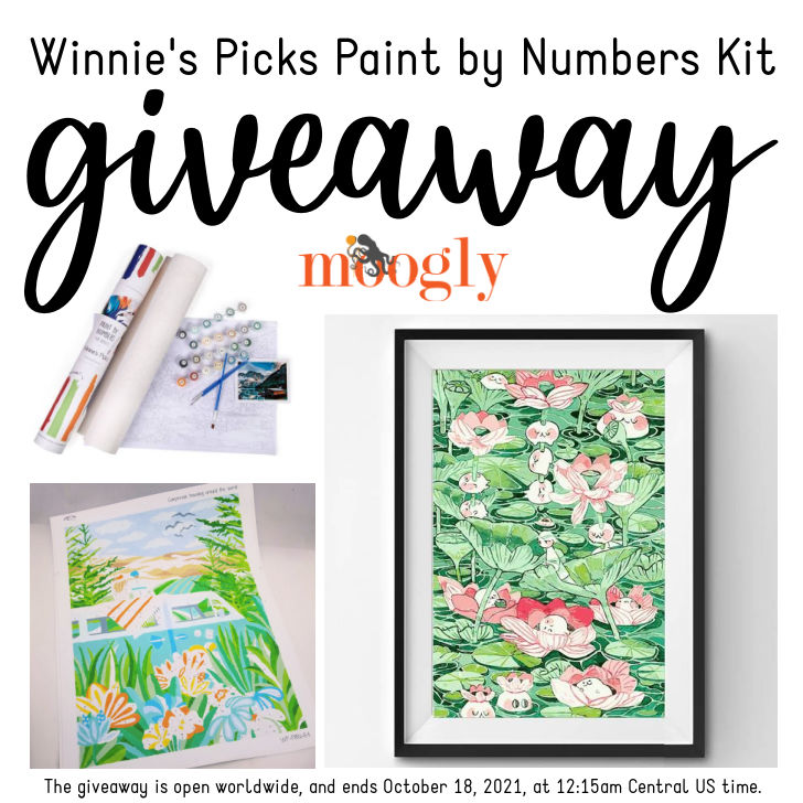 Winnie's Picks Paint by Numbers Kit Giveaway